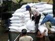 Tet : le gouvernement remet près de 1.420 tonnes de riz à quatre localités