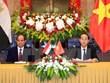 Les entreprises vietnamiennes doivent saisir des opportunités pour pénétrer le marché africain