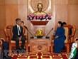 """Le programme """"Bateau de la jeunesse d'Asie du Sud-Est et du Japon"""" contribue au maintien de la paix"""