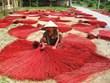 Le village de tissage de nattes de Dinh Yen