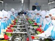 Soc Trang vise un chiffre d'affaires à l'export dépassant le milliard de dollars
