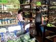 Soutien aux entreprises dans la promotion des produits en Afrique du Sud