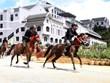 Lao Cai : Ouverture de la course hippique «Sabots de chevaux dans les nuages»