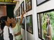 """Ouverture de l'exposition """"Cambodge - Royaume culturel"""" à Can Tho"""