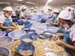 Exportations des produits agricoles, sylvicoles et aquatiques en hausse en deux mois