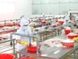 Efforts pour protéger la production et les chaînes d'approvisionnement