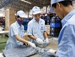 L'économie privée contribue pour 40% au PIB vietnamien