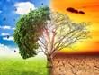 Lancement d'un portail sur le changement climatique pour les jeunes