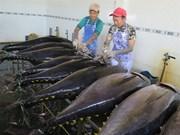 Belles perspectives pour la coopération agricole Japon-Vietnam