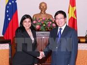 Rencontre des chefs de la diplomatie Vietnam-Venezuela