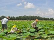 Plus de 18 millions de dollars pour préserver des zones humides