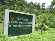 La protection des forêts, un moyen efficace de lutte contre la pauvreté