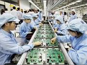 Tien Giang: les créations d'entreprises en hausse
