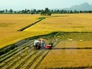 Satake souhaite fournir des machines agricoles modernes à Can Tho