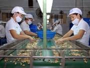 Vietnam et Italie resserrent leur coopération douanière