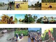 TPP : les entreprises du Delta du Mékong sont devant de grands défis