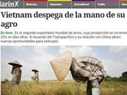 Le journal argentin Clarin salue les acquis agricoles du Vietnam