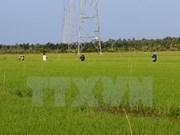 Japon et Vietnam s'engagent à promouvoir leur coopération agricole
