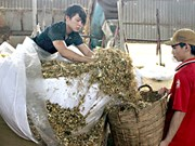 L'excédent commercial de Dông Nai atteindra plus de 1,5 milliard de dollars