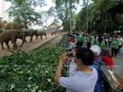 Le jardin zoologique et botanique de Saigon fête ses 150 ans