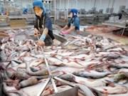 Pangasius: à la recherche de mesures pour élargir les débouchés d'exportation