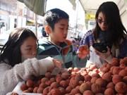 Hanoi rencontre des Viet Kieu à l'occasion du Nouvel An