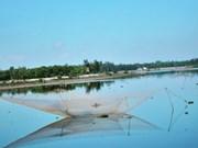 Le Vietnam prend de nombreuses mesures en réponse au changement climatique