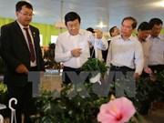 Le président Truong Tan Sang salue les modèles agricoles high tech de Lam Dong