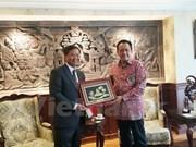 Le Vietnam, une priorité de l'Indonésie dans la région