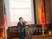 Vietnam-Malaisie : de robustes relations qui se sont affirmées en 2015