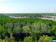 Système d'information pour une meilleure gestion des forêts