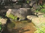 Les puits antiques de Gio An, vestiges de la culture du Champa