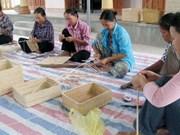 Hanoi soutient la formation professionnelle des travailleurs ruraux