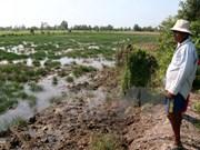 Le Delta du Mékong menacé par les barrages hydroélectriques