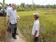 Le leader du PCV exhorte Ben Tre à tout faire contre la sécheresse