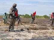 Agent orange : le Vietnam et les États-Unis renforcent leur coopération