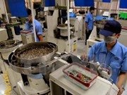 Industrie lourde : inauguration d'une usine japonaise à Ha Nam