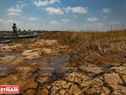 La lutte contre la sécheresse et l'intrusion saline dans le delta du Mékong