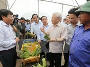 Le secrétaire général du PCV Nguyen Phu Trong à Ha Tinh
