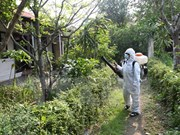 Intensification de l'examen du travail de prévention et de lutte contre le virus Zika
