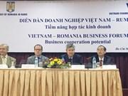 Forum d'entreprises Vietnam-Roumanie à Ho Chi Minh-Ville