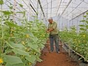 Plus d'un million de dollars d'aide de la Nouvelle-Zélande pour la culture bio à Binh Dinh