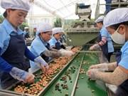 Commerce équitable : d'énormes opportunités pour les produits agricoles vietnamiens en UE