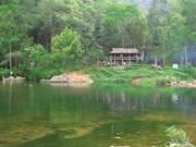 Cure de nature en forêt de Bac Giang