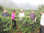 Le 7e Congrès de l'Association des agriculteurs d'Asie pour un développement rural durable