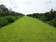 Mieux préserver et valoriser la Réserve de biosphère de Kien Giang