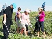 Plus de 400 étrangers participent au nettoyage de la plage de Tuy Hoa