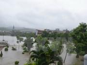 Exercice de simulation de catastrophe naturelle à Hanoi
