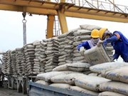 Production de ciment et de clinker: le Vietnam dans le top 5 mondial