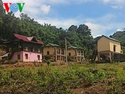 Nouvelle ruralité: Un programme de relogement modèle à Quang Tri